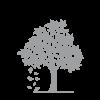 Livstræ Symbol - Sølv