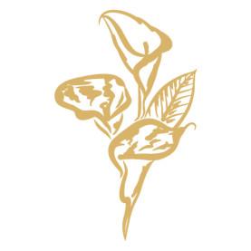 Calla symbol