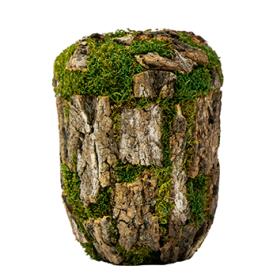 Natur Bark nr. 21991